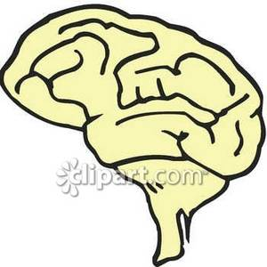 Brains clipart simple Clipart Simple Brain Free Picture