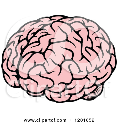 Brains clipart smart brain Clipground brain Clipart Human images