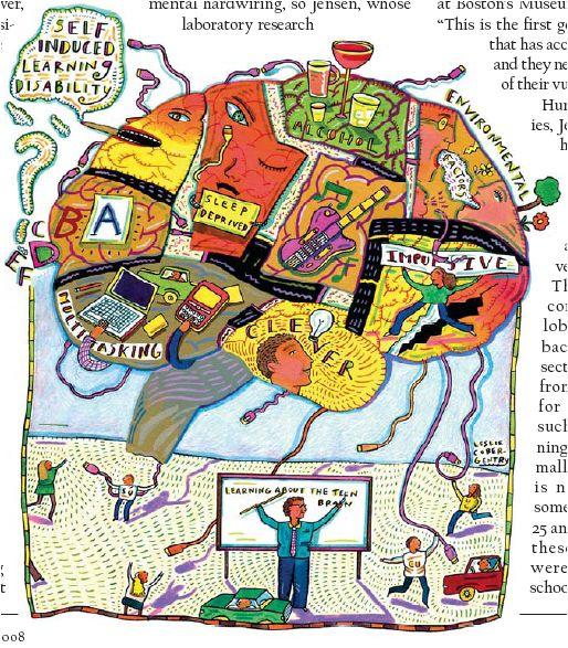 Brains clipart the adolescent Best Adolescent The Brain more