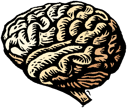 Drawn brains clipart background Free 2 Brain clipart Art