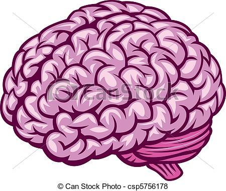 Drawn brains clip art Art Clip Vector Illustration of