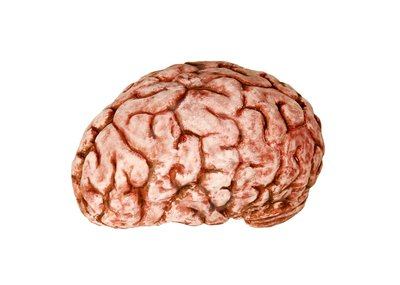 Brain clipart zombie brain Ball will ball festive you