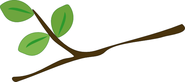 Branch clipart Download Branch clipart Download Branch