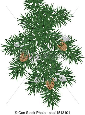 Branch clipart bough Download Pine Clipart Pine Clipart