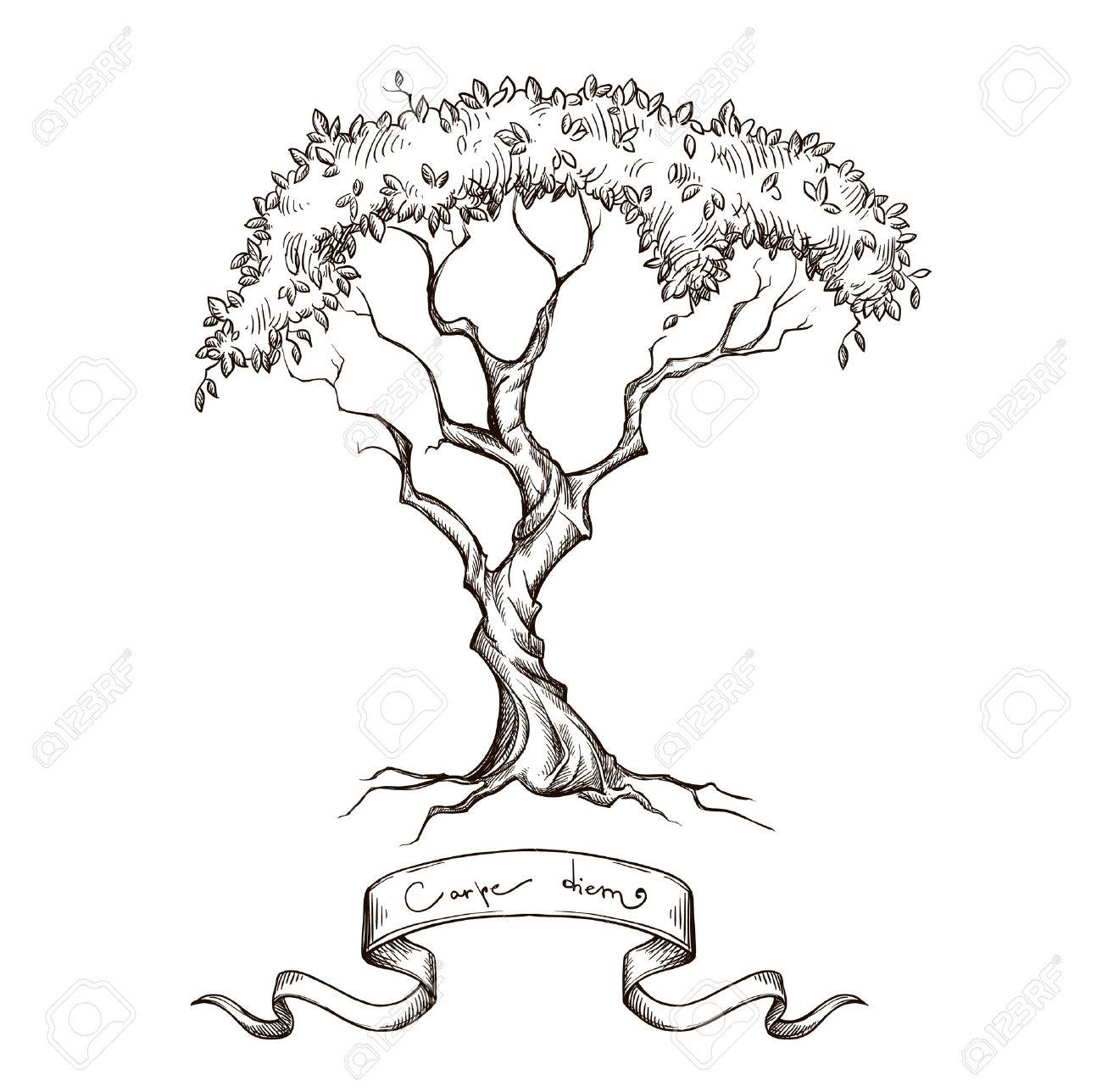 Branch clipart drawn Clipart tree Hand white black