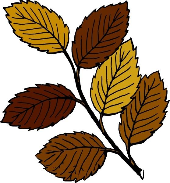 Branch clipart leave illustration  art Leaves vector art