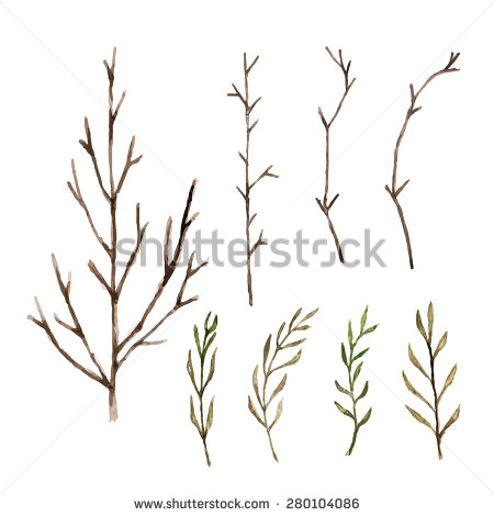 Branch clipart watercolor Branch Stock Images Pictures Photos