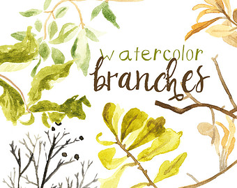Branch clipart watercolor Painted clip branches Commercial Art