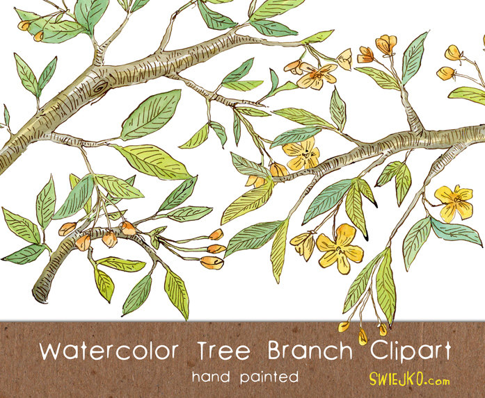 Branch clipart watercolor Is from Watercolor file