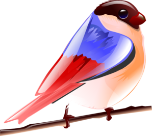 Brds clipart colorful bird Bird at Colorful Clip clip
