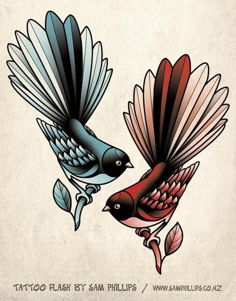 Brds clipart fantail Fantail Pin best this 49