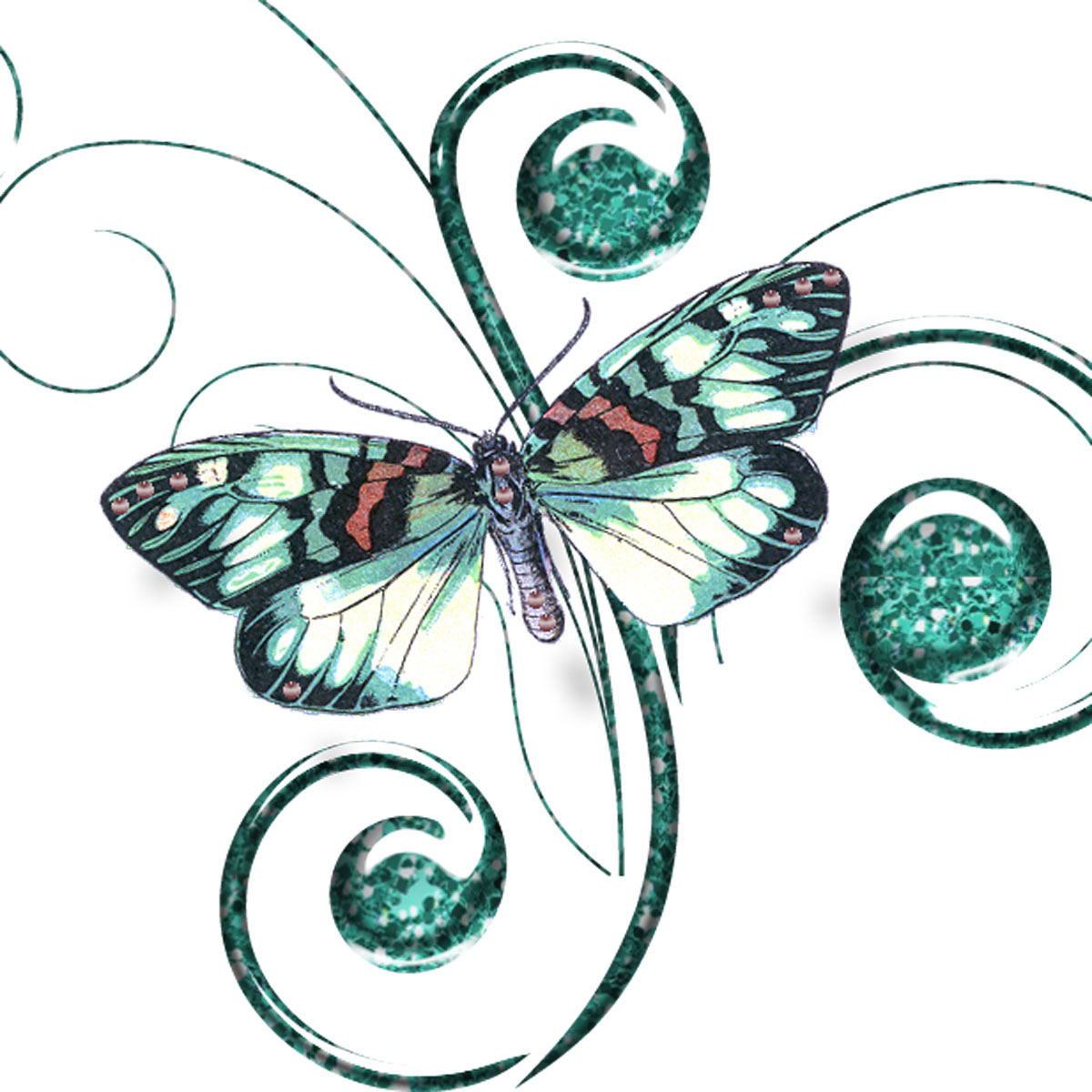 Bride clipart butterfly