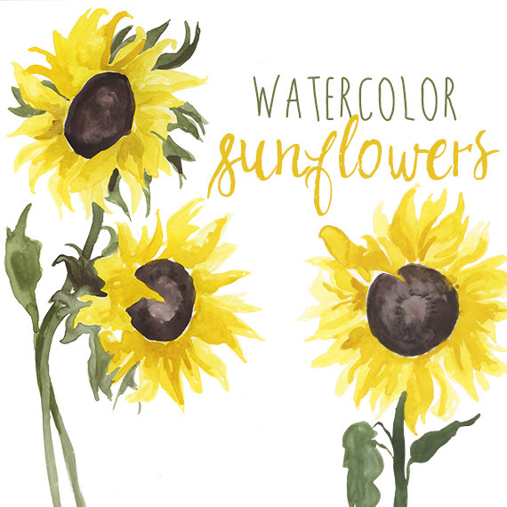 Yellow Flower clipart sunflower Yellow Sunflower clipart Watercolor