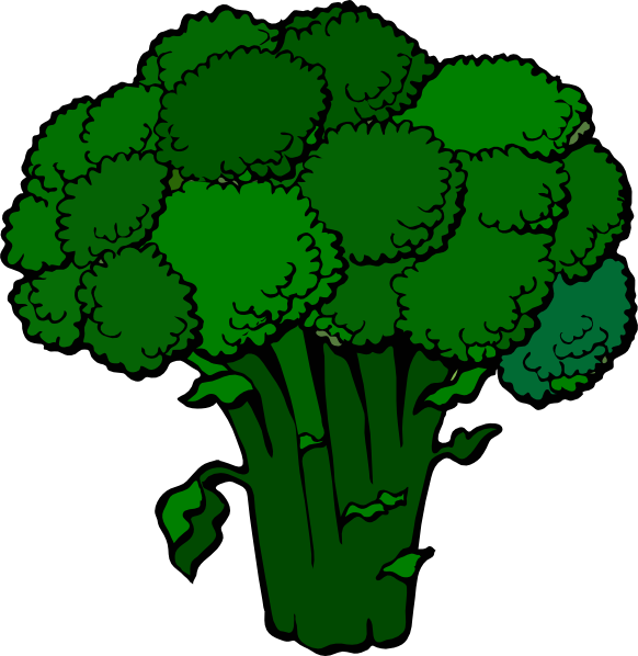 Broccoli clipart cauliflower 20clipart Panda Clipart Broccoli Images