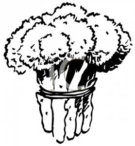 Broccoli clipart black and white Broccoli and Bunch of of