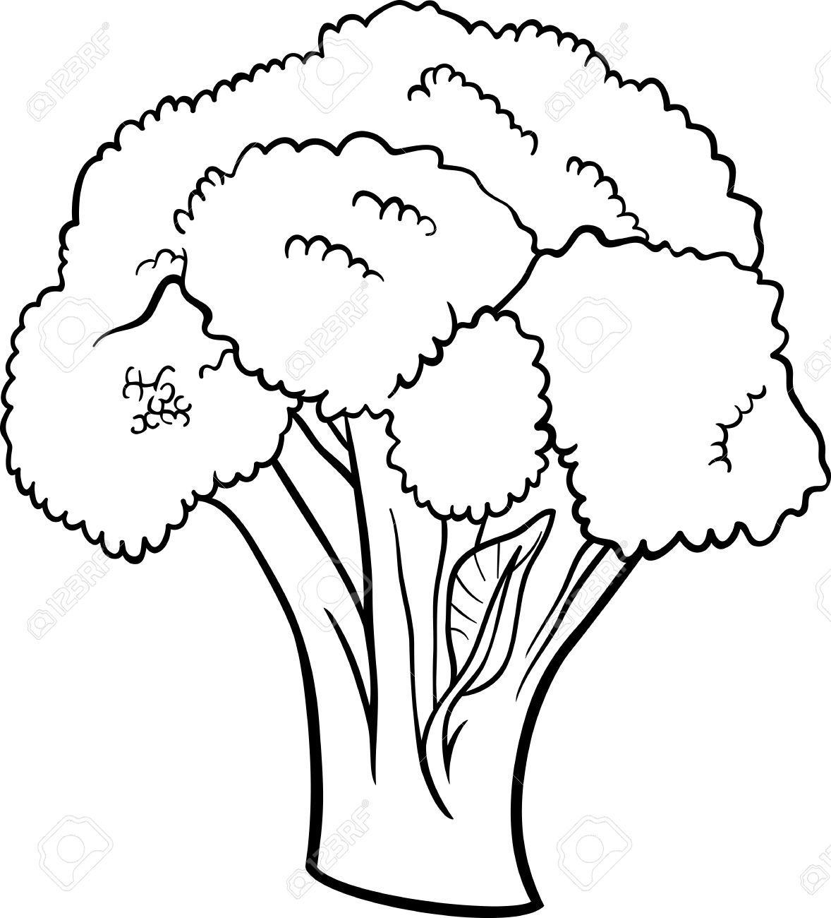Broccoli clipart black and white And collection Illustration White Black