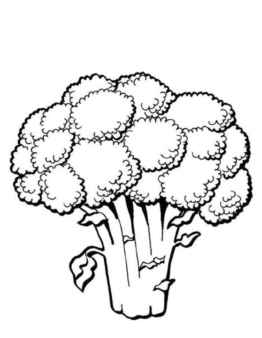 Broccoli clipart black and white And 889x1149 Coloring black Pages