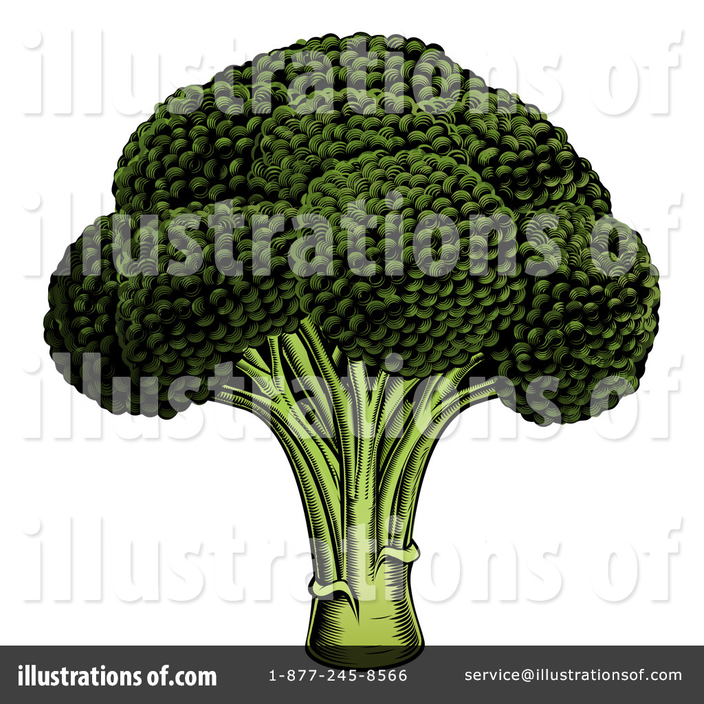 Broccoli clipart cauliflower Cauliflower  Clipart