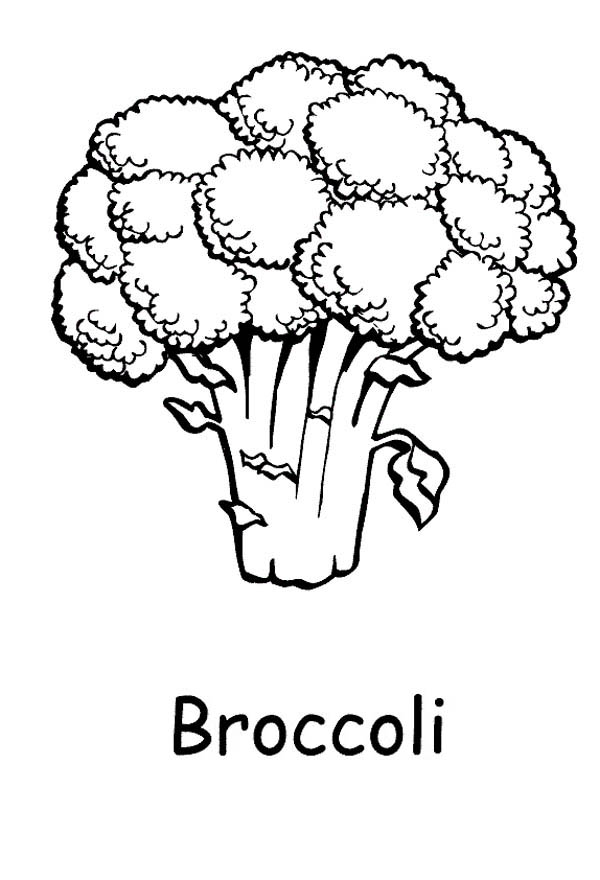 Broccoli clipart coloring Pages Broccoli coloring 3 #Broccoli