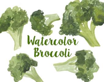 Lettuce clipart vector Artwork set clip Watercolor Broccoli