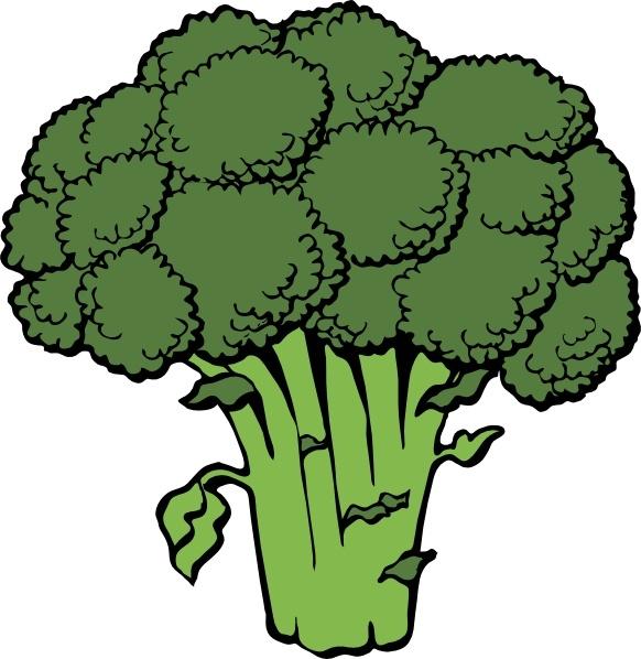 Broccoli clipart vector Art Open clip Free vector