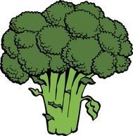 Broccoli clipart vector Clip Free Zone Cliparts art