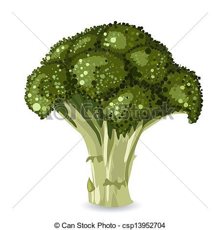 Broccoli clipart vector 647  Vector Broccoli EPS