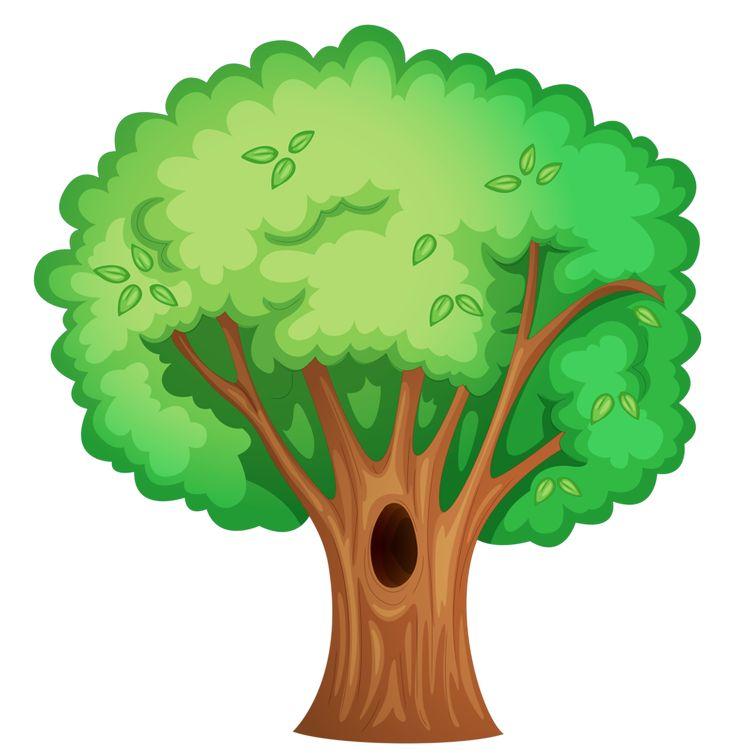 Broccoli clipart vegetable plant Plant Pinterest best Фотки on