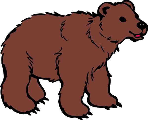 Brown Bear clipart Images cwemi Clipartix bear clip