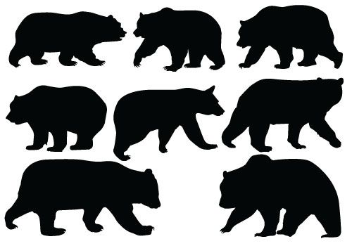 Black Bear clipart bear hunt Have with pictures pictures sites