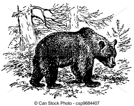 Brown Bear clipart drawn Of in csp9684407 csp9684407 bear