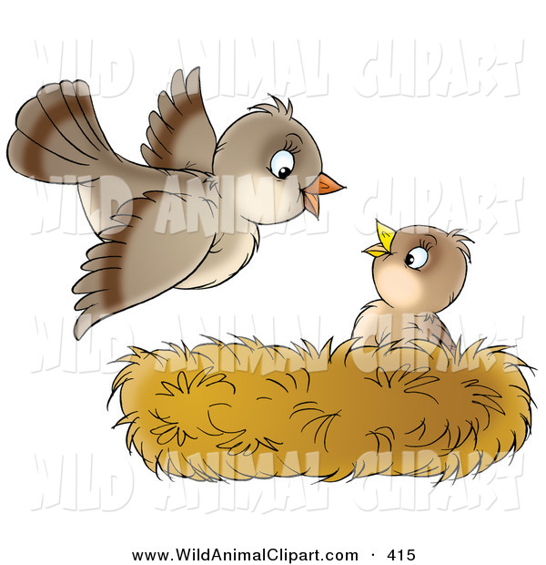 Brown clipart baby bird Cliparts Clipart nest Databases art