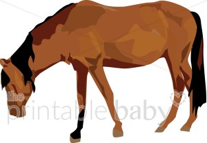 Brown clipart baby horse Brown Clipart Baby Clipart Horse