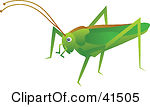 Brown clipart cricket Clipart Cricket  Brown