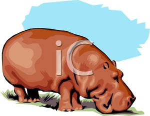 Brown clipart hippo Hippo A Image: Grazing Art