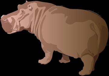 Brown clipart hippo Ark English Art  Exercises:
