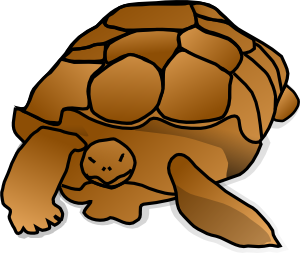 Brown clipart turtle Art Turtle vector Clip Clker