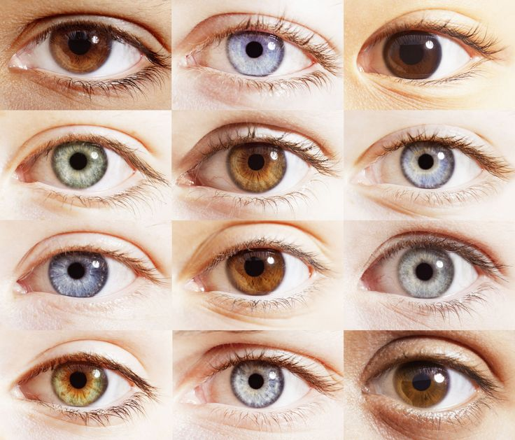 Brown Eyes clipart human nose Images You If best about