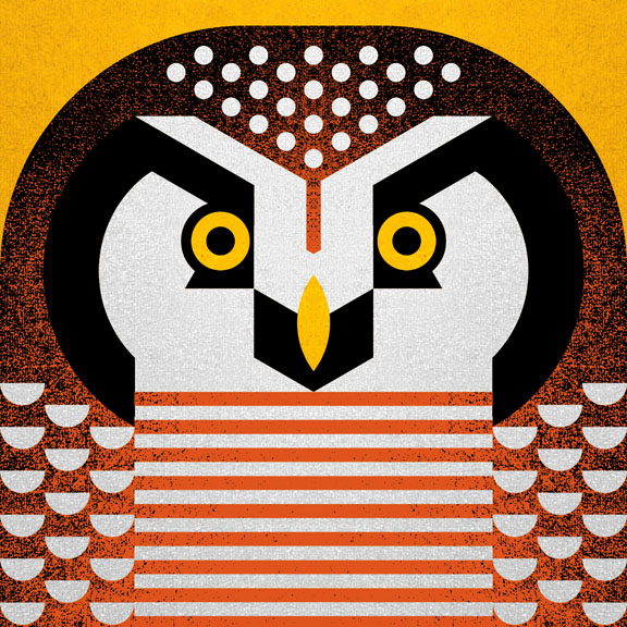 Brown Hawk Owl clipart sketch Illustration Hawk Scott Scott American