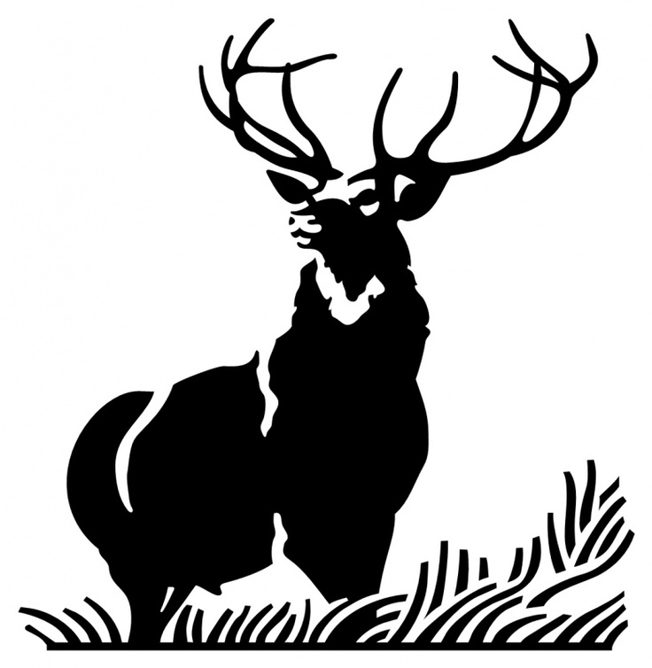 Buck clipart 12 point Stag  images Pinterest on