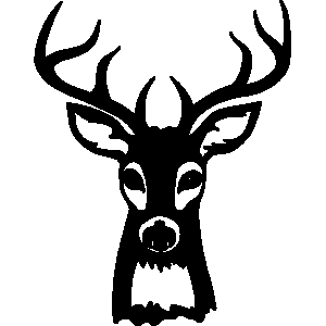 Hunting clipart deer head Download clipart Download Buck drawings