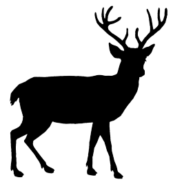 Buck clipart deer silhouette Animal deer beautiful Silhouette Art