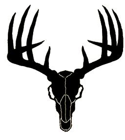 Buck clipart deer skull Info Clipart Free Panda Images