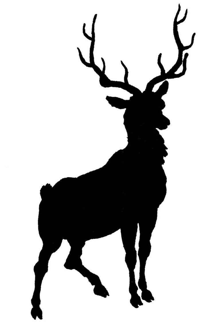Buck clipart elk antler With Deer Deer Pinterest with