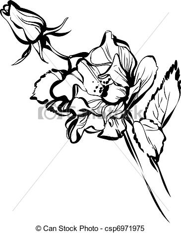 Bud clipart cotton ball Big flower a of beautiful