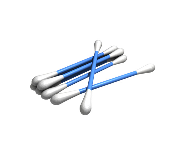 Bud clipart cotton bud Clipart Cotton Buds
