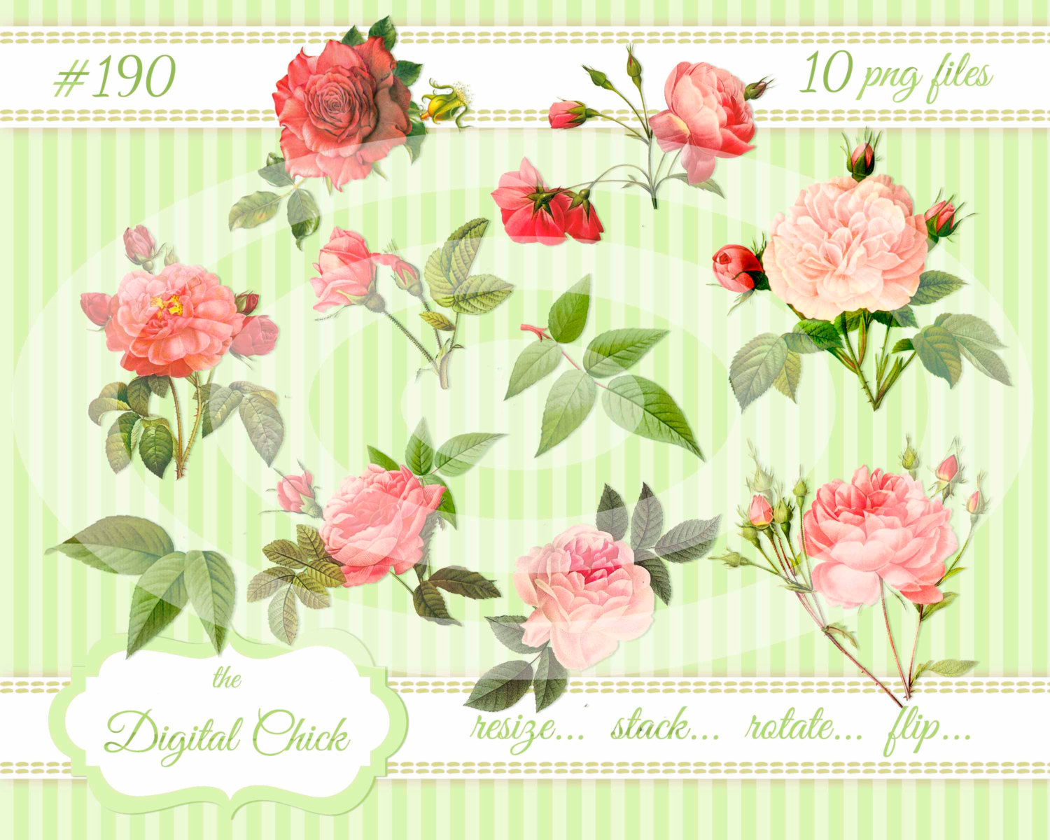 Bud clipart green rose Rose Pink Images download Clipart
