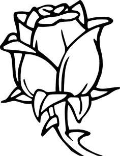 Drawn bud Black  Flower Art png