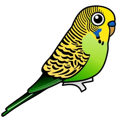 Budgie clipart blue and yellow About Pinterest zcache Image on