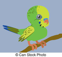 Budgerigars clipart Download drawings clipart clipart Budgie